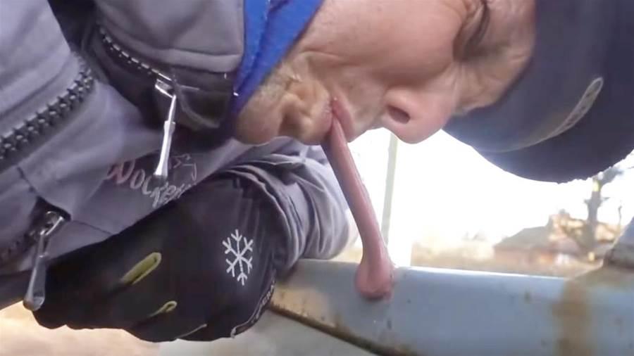 在零下48度的環境下,老外用舌頭舔鐵杆,吃一塹長一智