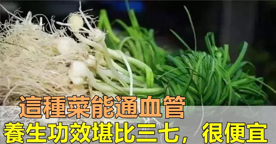 daigashare